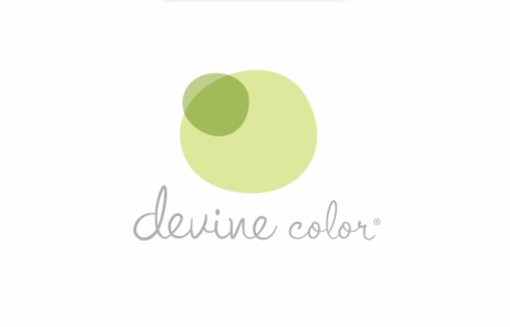 Valspar Paints – Devine Color DVD Released